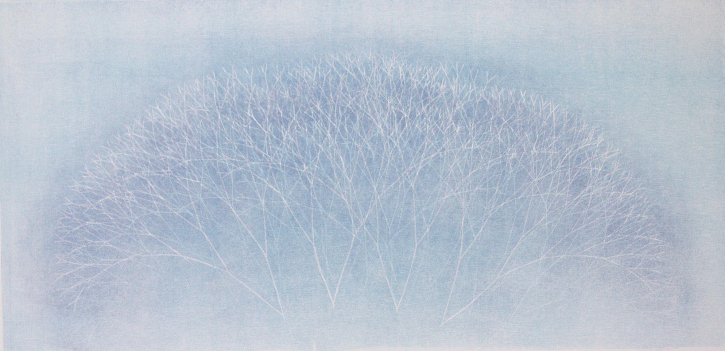58. Talven valosta - Winter light