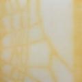 67. Varjot - Shadows